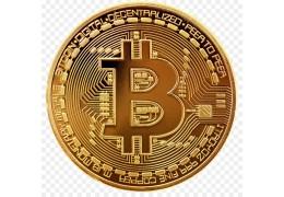 E-Epicure pioneros aceptando Bitcoin para tus compras